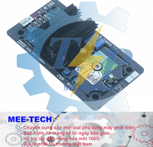 Bộ điều chỉnh điện áp (AVR) Leroy Somer R250